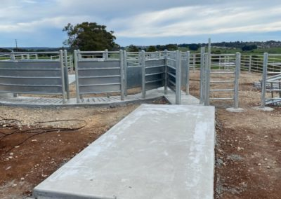 Concrete slab at cattle yard