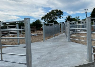 Concrete slab for milking shed
